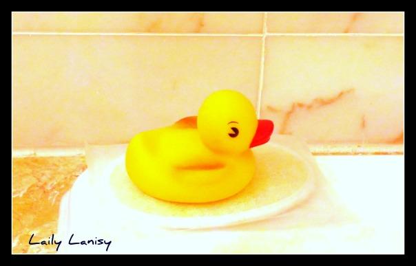 Giant Duck 5