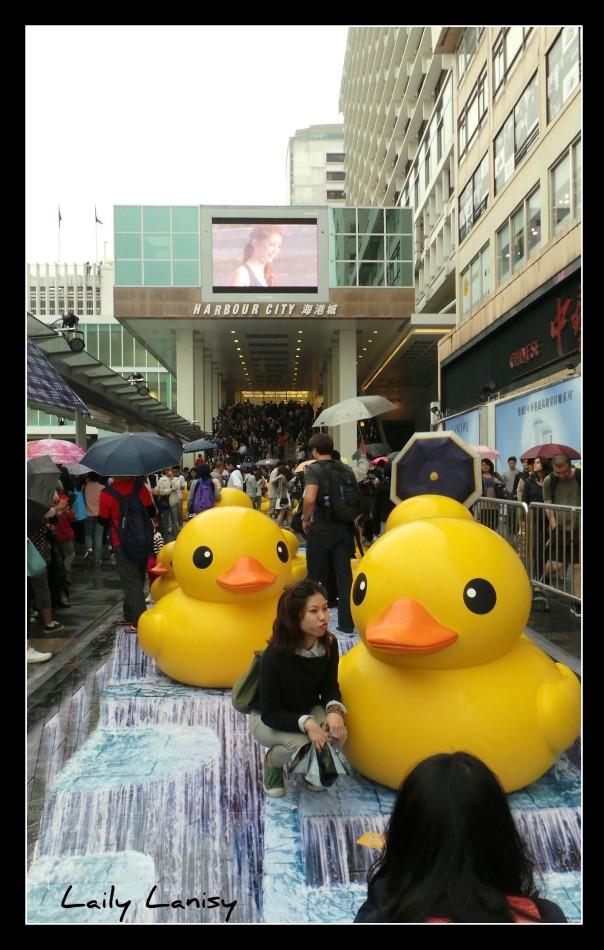 Giant Duck 6