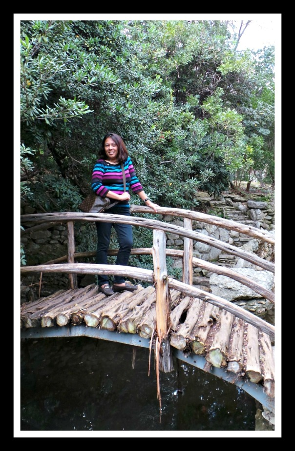 The wooden bridge above the Koi Ponds