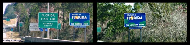 Welcome to Florida 3
